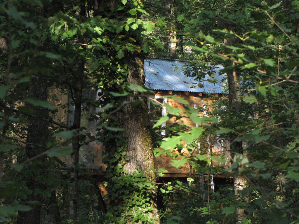 Cabane-dans-le-bois-03