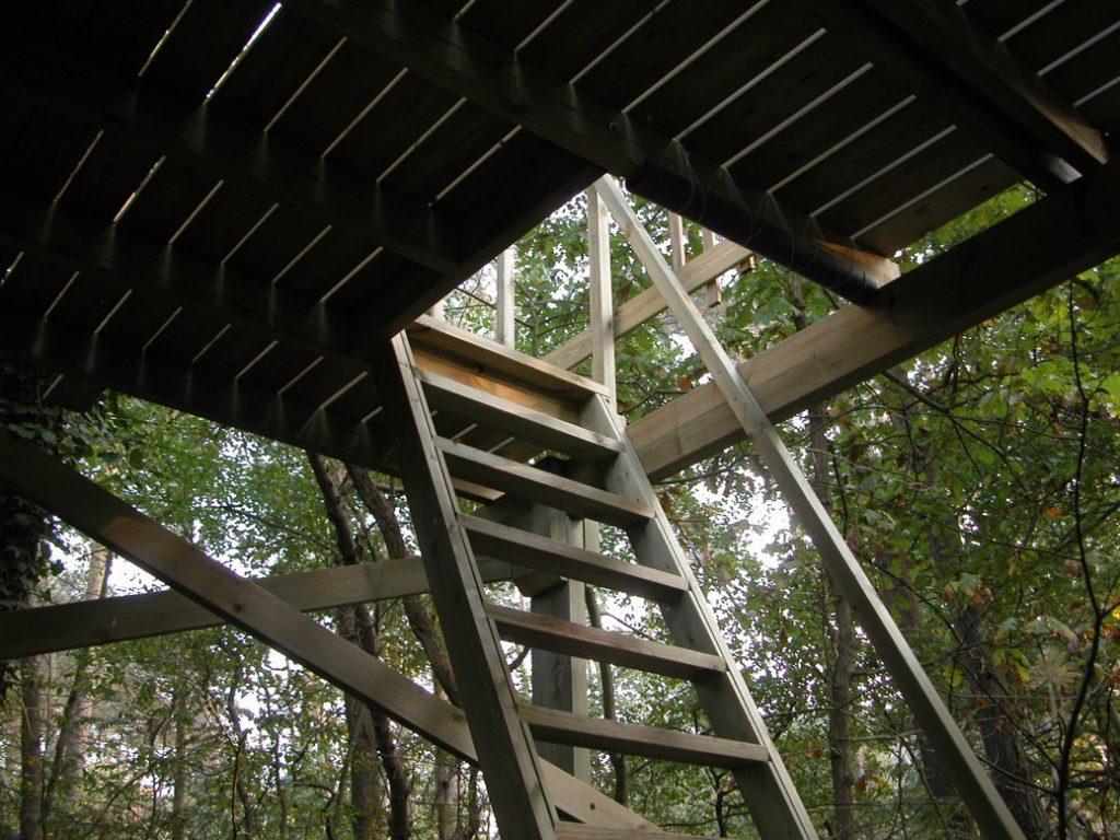 Cabane-dans-les-pins-03
