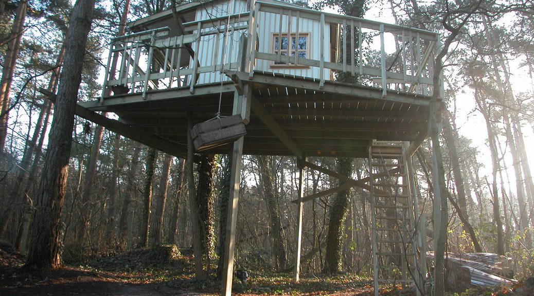 Cabane-dans-les-pins-01