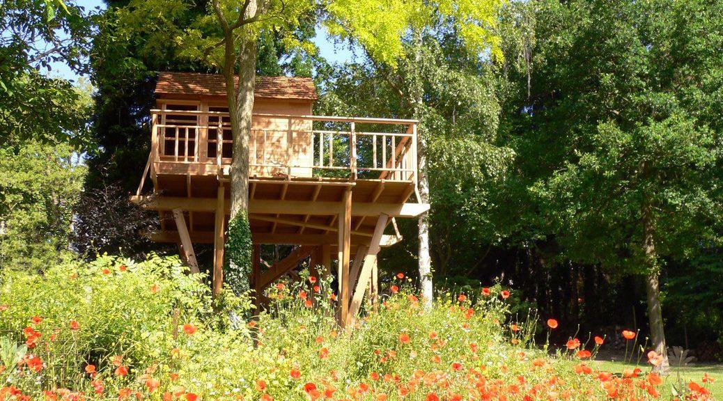 Cabane en cedre
